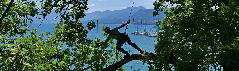 Super versatile climbing rope