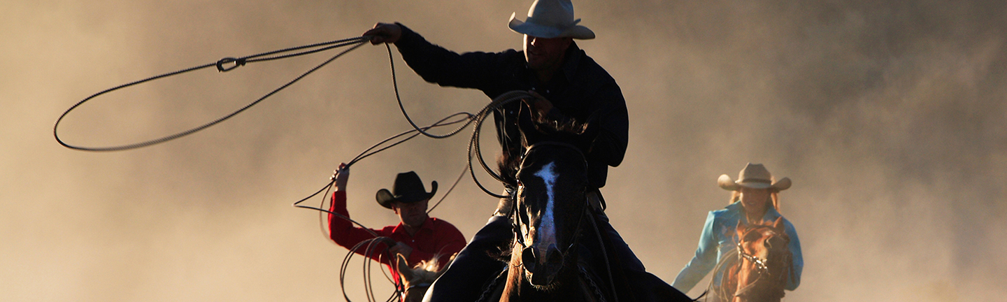 Reins for Leading and Roping
