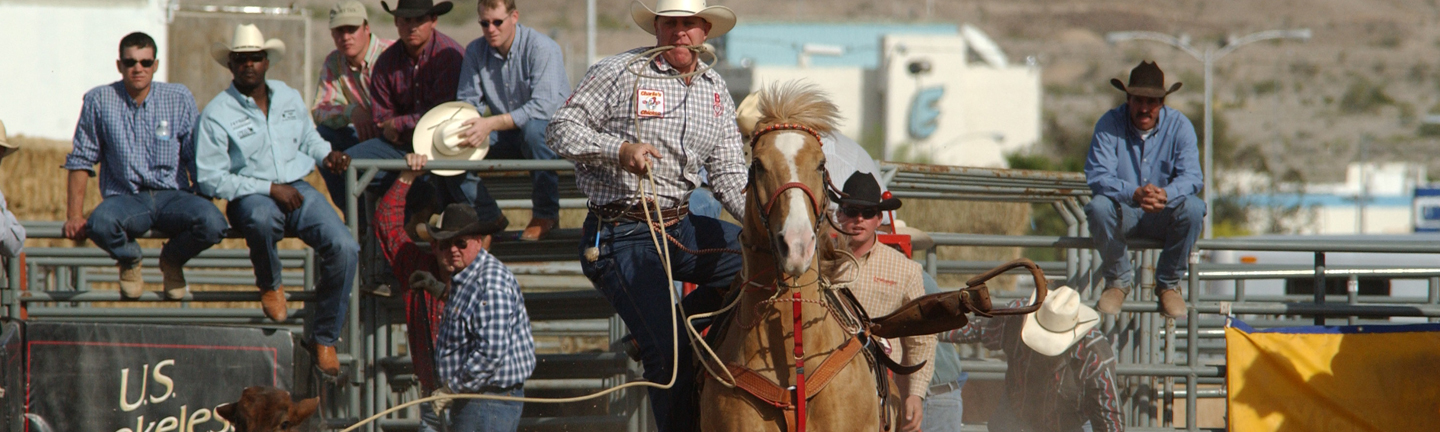 Lines for Calf Roping
